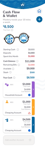 Afirefi's Cashflow section lets you see your accounts at a glance and know whow much money you really have.