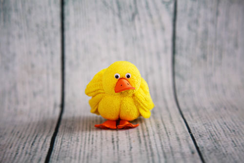 Little Duck (bit cranky)!