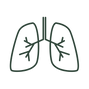 BBN logo (4).png