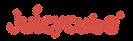 juicycube logo.png