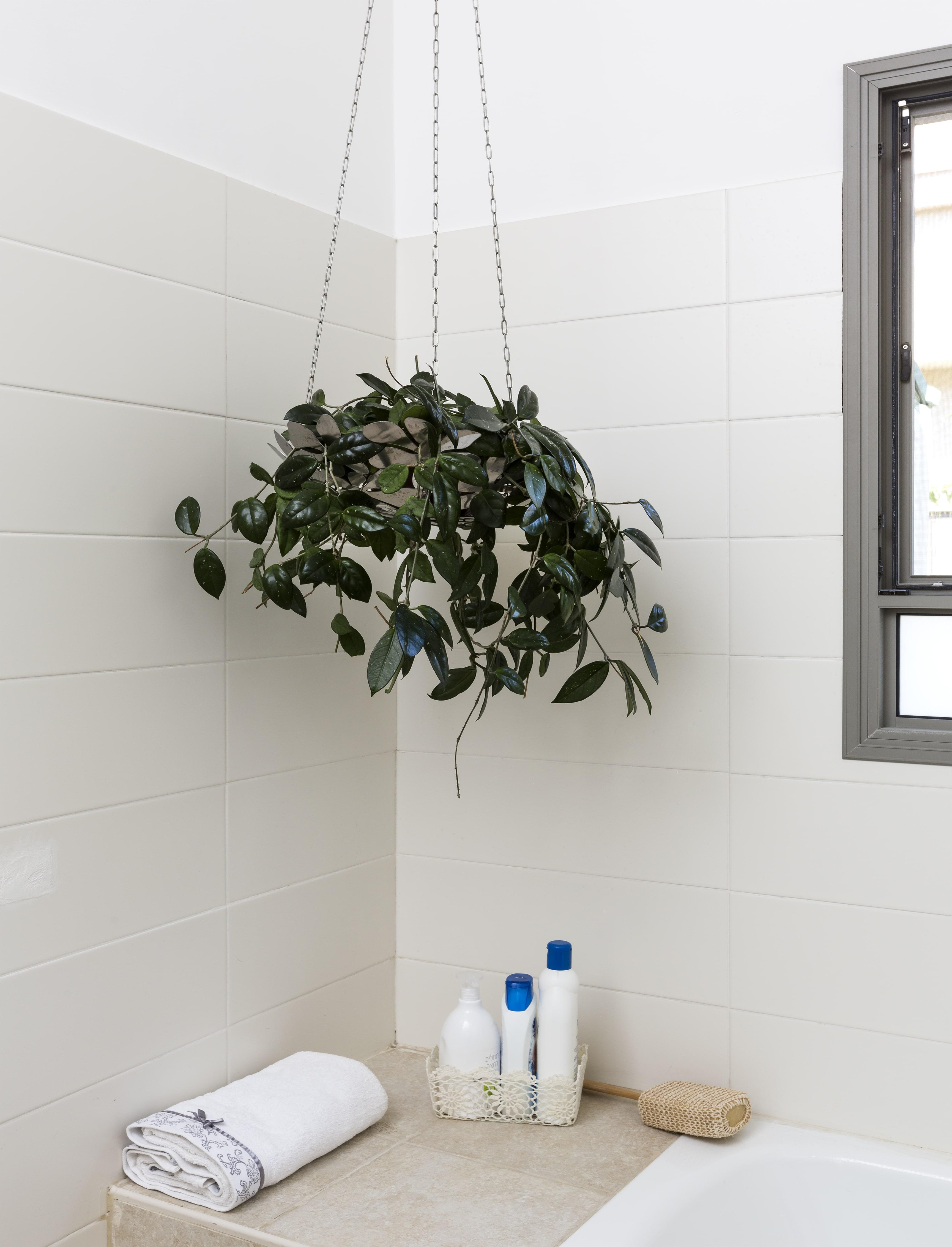 גם למקלחת מגיע ירוק