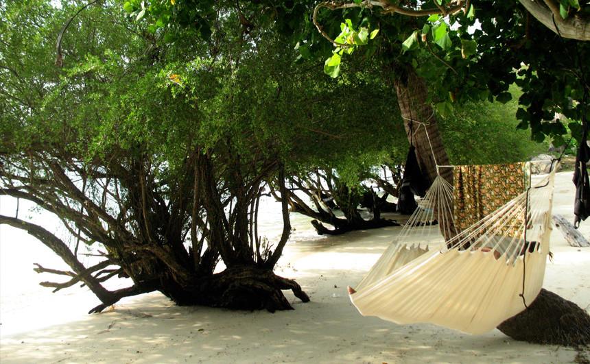Hamac Fauteuil à la plage tropicale