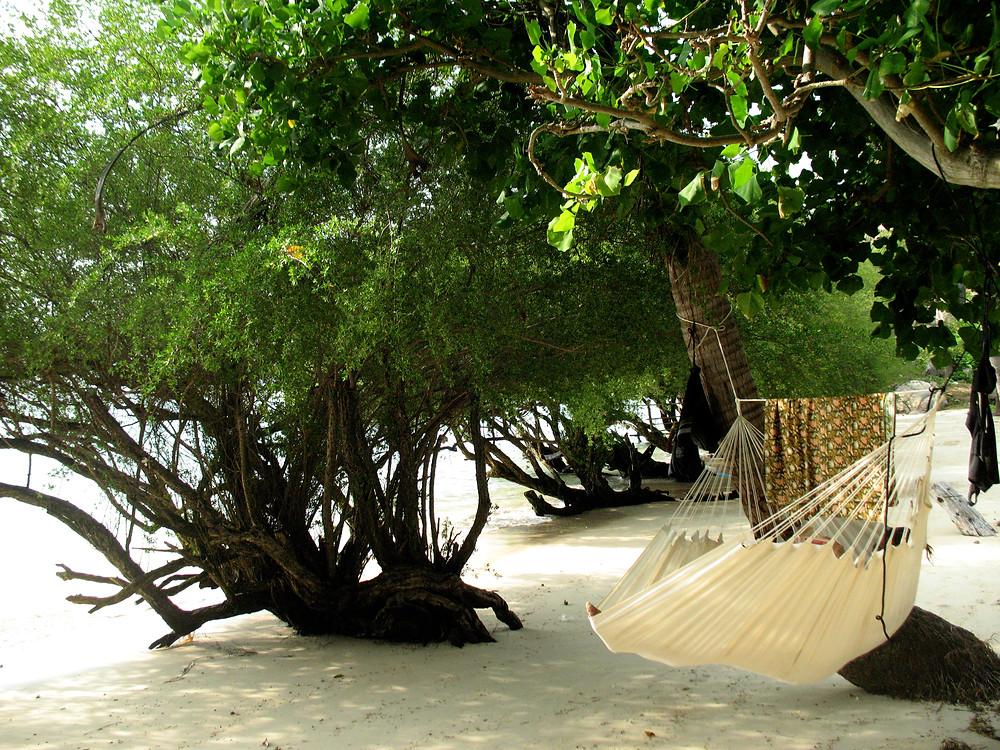 Hamac Fauteuil accroché entre deux arbres