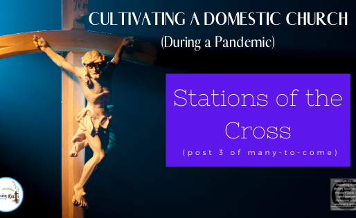 Cultivating a Domestic Church (during a Pandemic)...Stations of the Cross (3 of many-to-come)
