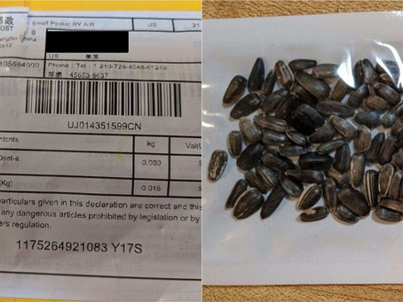 Warning issued about mystery seeds from China
