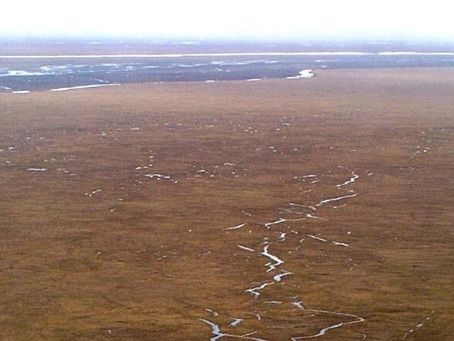 US approves oil, gas leasing plan for Alaska Wildlife refuge