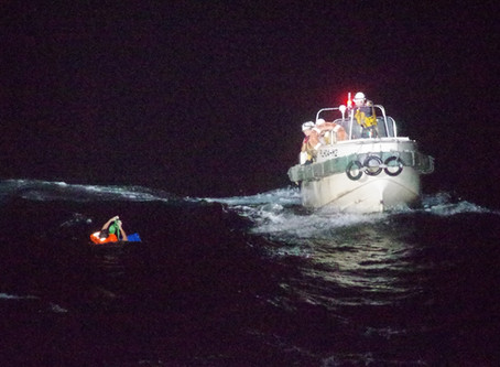 Cattle ship capsizes in storm off Japan's coast