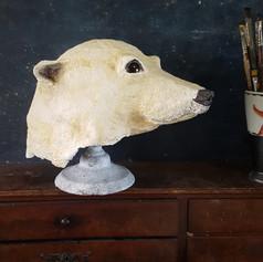 Coiffe d'ours polaire