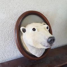 Trophée ours polaire
