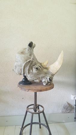 Rhinoceros PD