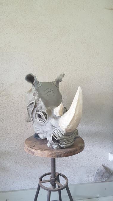 Rhinoceros 3/4 D