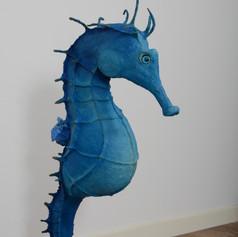 L'hippocampe bleu