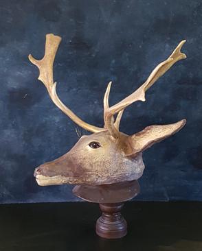 Le cerf  Sculpture en papiermache Dim 50*74*38cm Anne C Creation