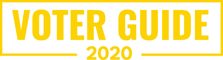 Voter Guide Graphic Yellow - English.png