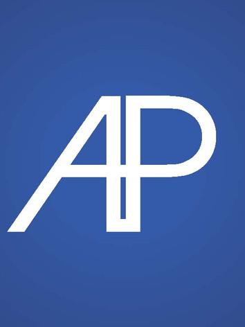 AP Brand Guide-Final2_Page_13.jpg