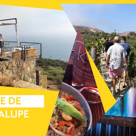 Three Reasons Why We Are Obsessed With Valle de Guadalupe