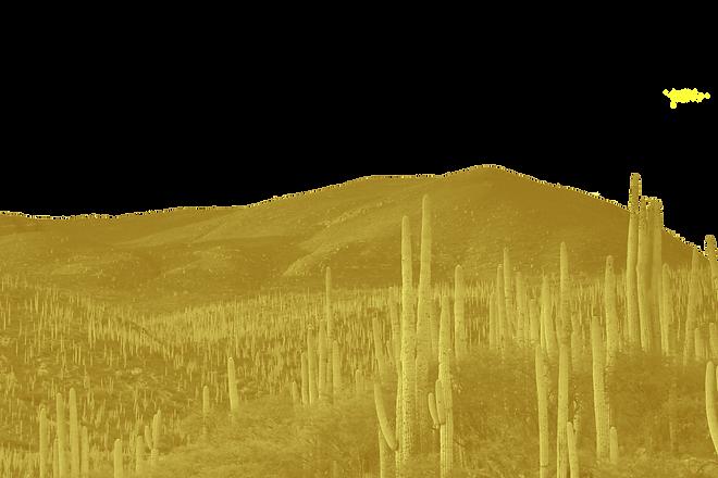 Desert_edited.png