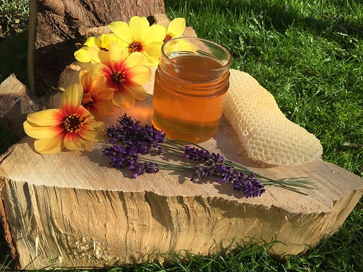 Wilflower Summer Honey from Wildacres Nature Reserve