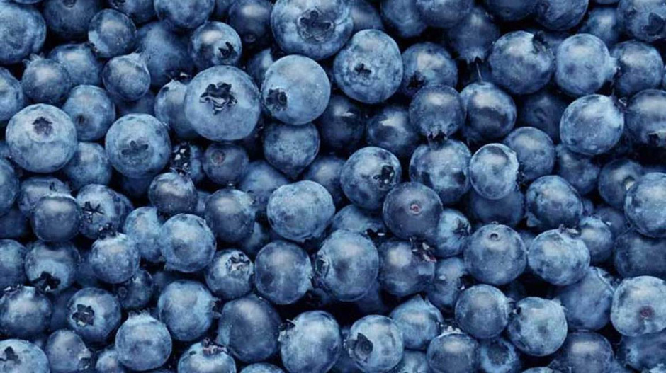 July is National Blueberry Month