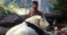 Goat pic #1.jpg