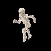 running skeleton.png