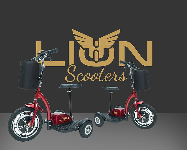 LION Scooter 3
