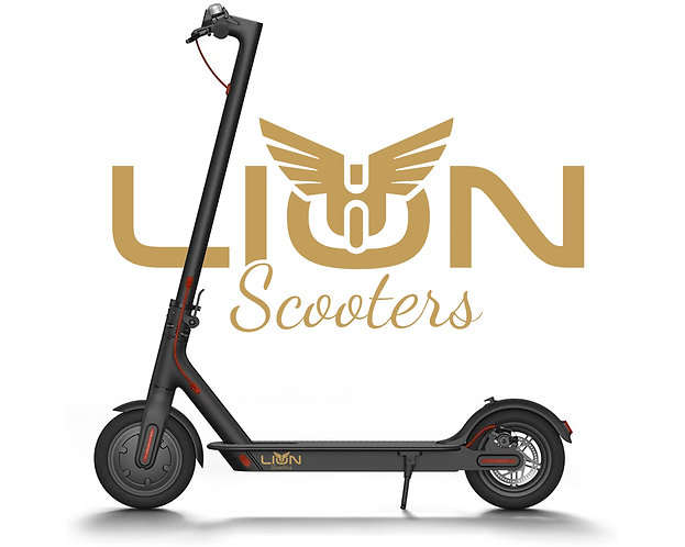 LION Scooter 1