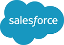 sales force logo.png