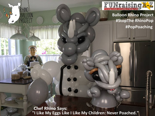Balloon Rhino Project