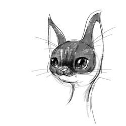 skinny cat