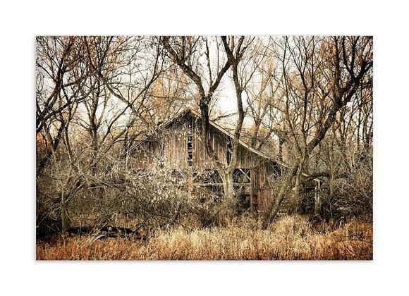 Hwy 10 Barn Postcard