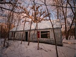 Red Shutter Woods