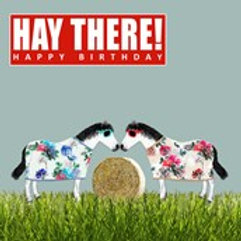 Hay There Happy Birthday-Greeting Card