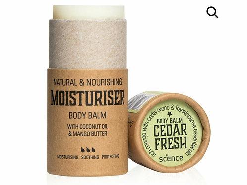 Cedar Fresh body balm
