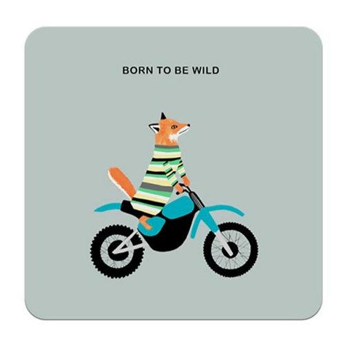 Born to be wild - coaster