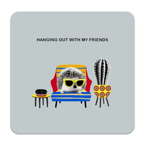 Hanging out with friends- coaster