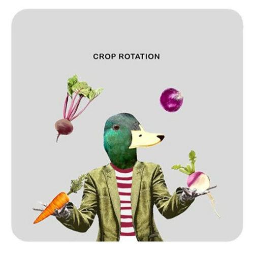 Crop rotation -coaster
