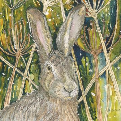 Hare Today Greeting Card And Coaster