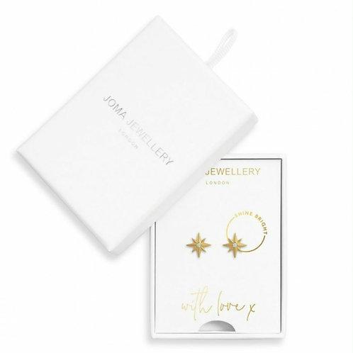 Shone bright earrings (3495)