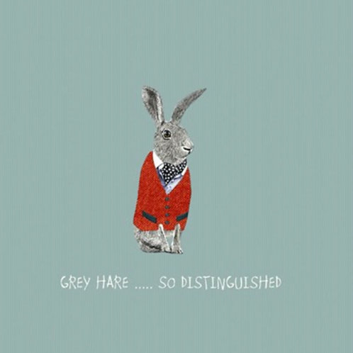 Grey hare, so distinguished-greetings card