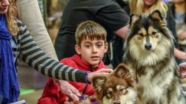Annual Dog Lover's Show (CANCELLED)