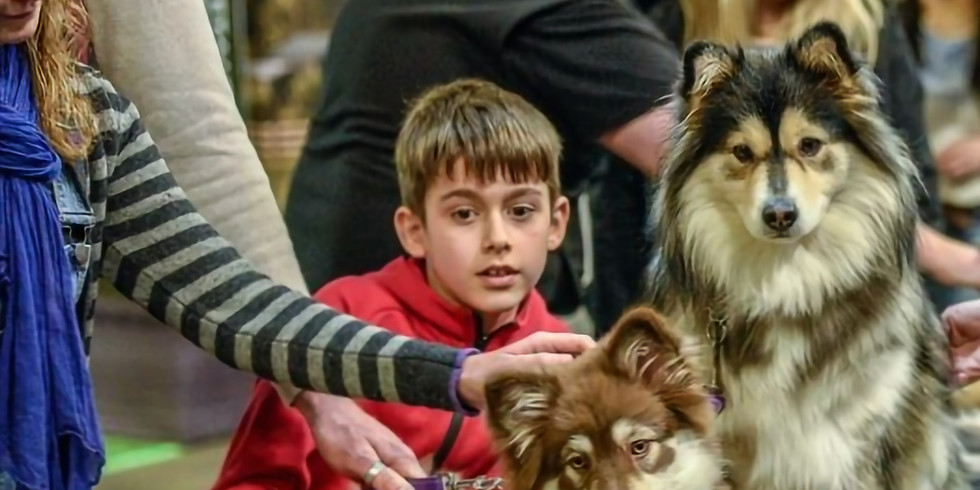 Annual Dog Lover's Show