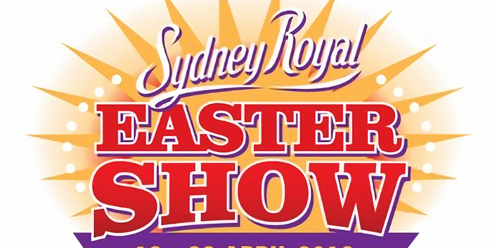 Watch Finnish Lapphund breed judging at the Sydney Royal Show