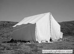 tent_frank_buscemi_nti