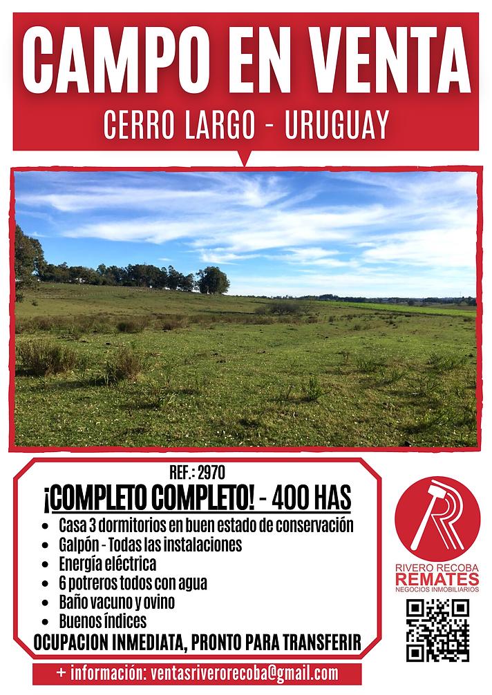 CAMPO EN VENTA CERRO LARGO - URUGUAY.png