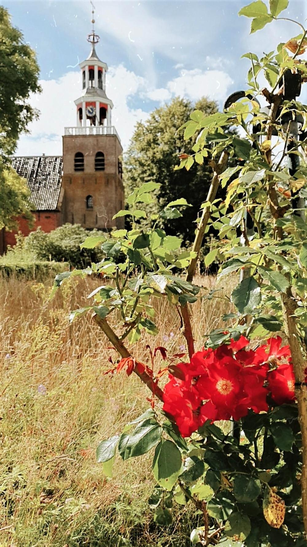 Botanical Garden Domies Toen-Pieterburen-The Netherlands