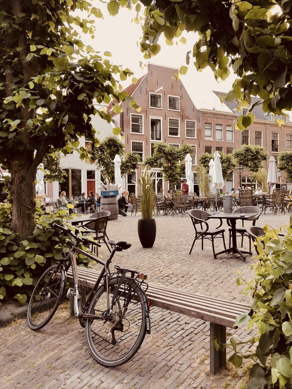 Leiden Netherlands city terraces