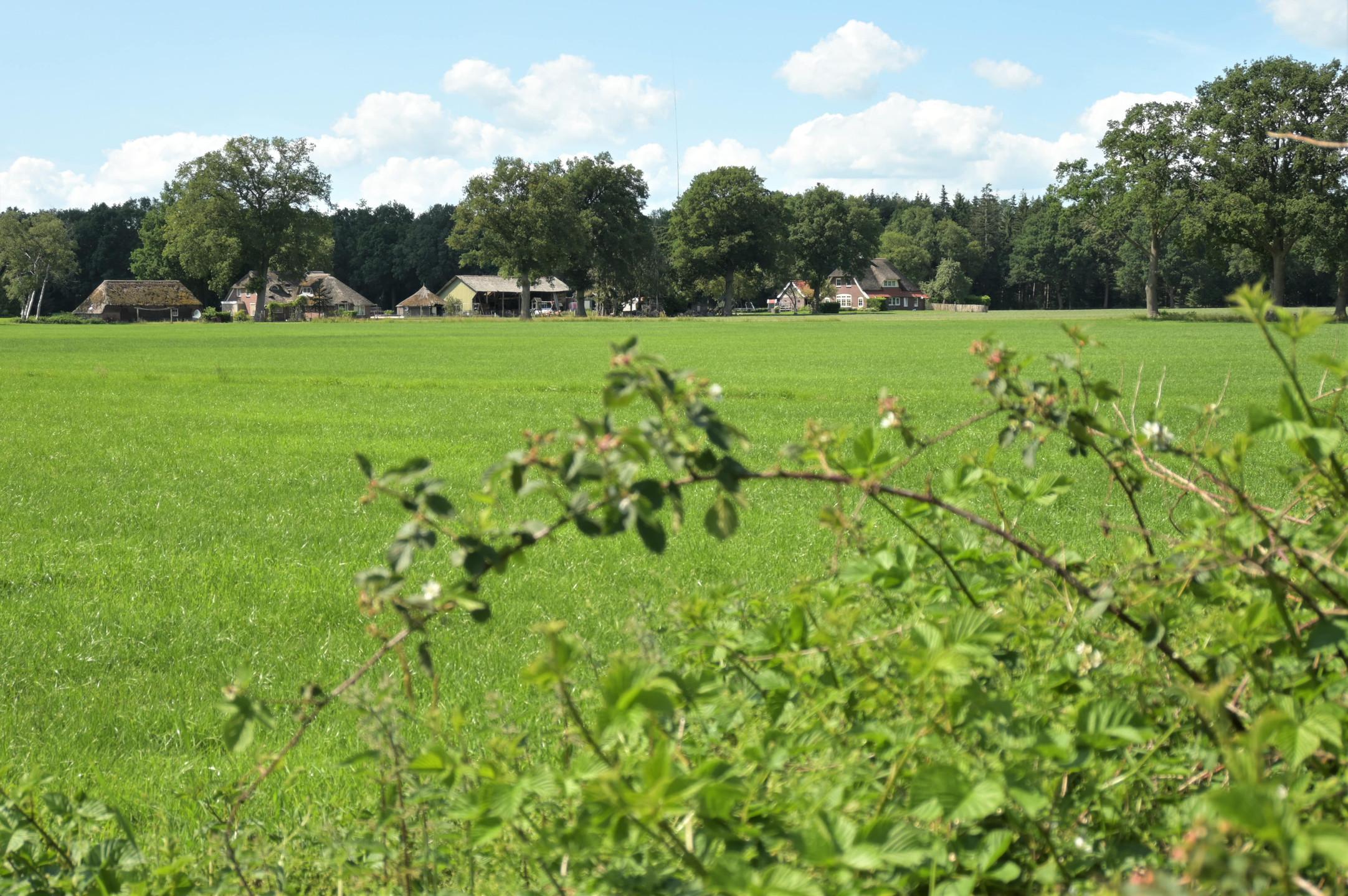 Countryside Overijssel - the Netherlands