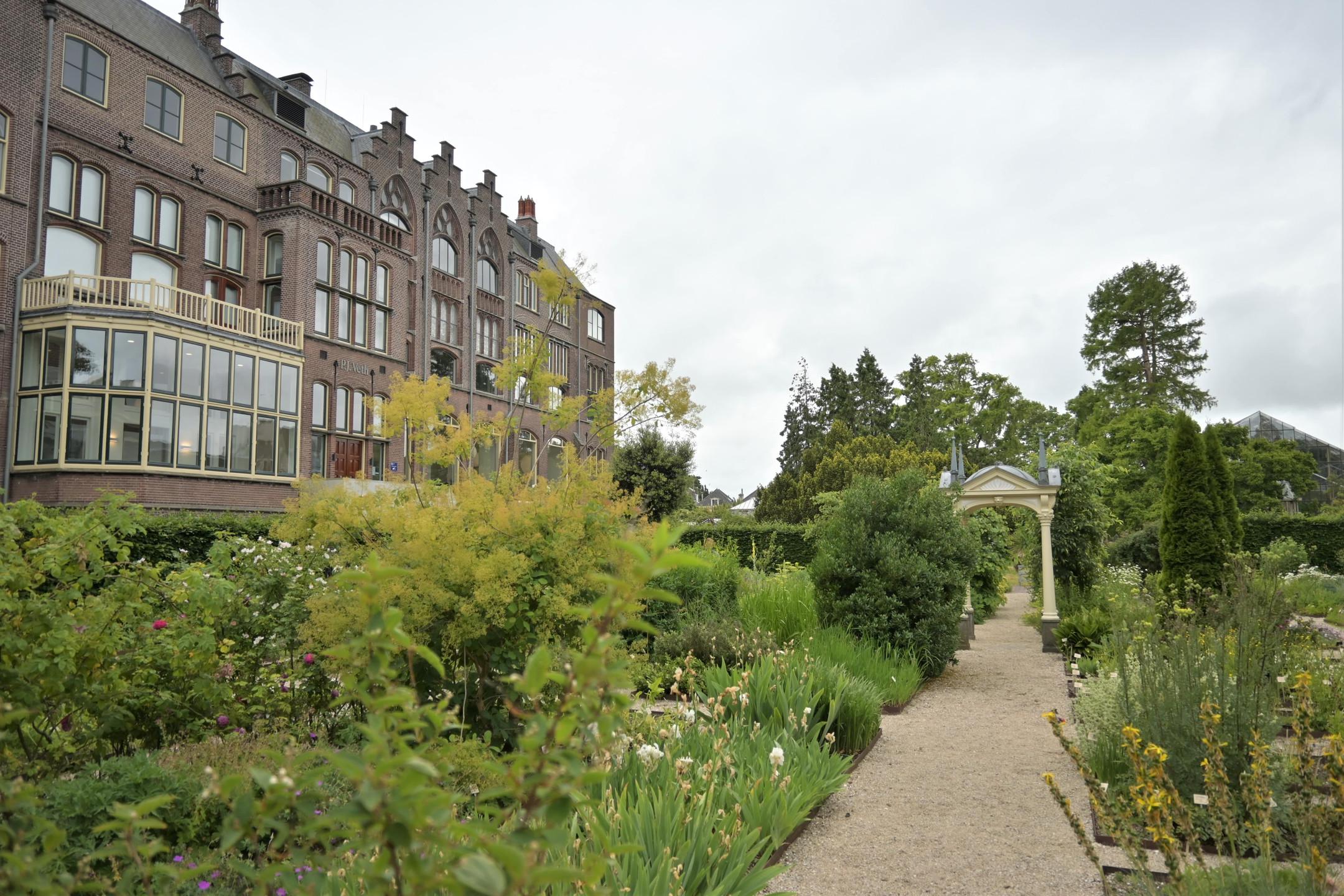Hortus Botanicus Leiden Netherlands citytrip staycation