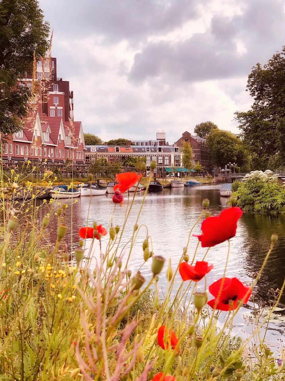 Leiden view Netherlands citytrip